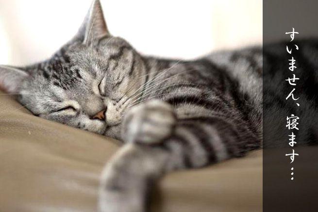 仕事中に眠くなる全てのひとに16の眠気対策・体験レポート~後編~(アイキャッチ)